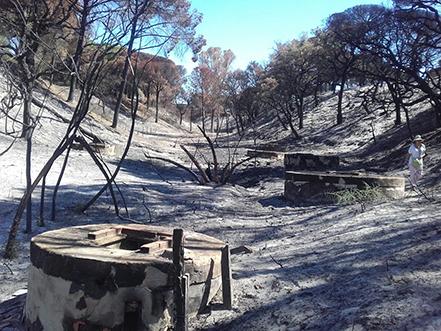 acuíferos, incendios, Las Peñuelas