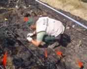 AEAFMA, investigación incendios,