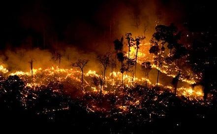 amazonia-incendio-greenpeace