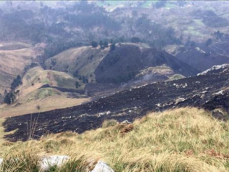 asturias-brif-tineo-incendios
