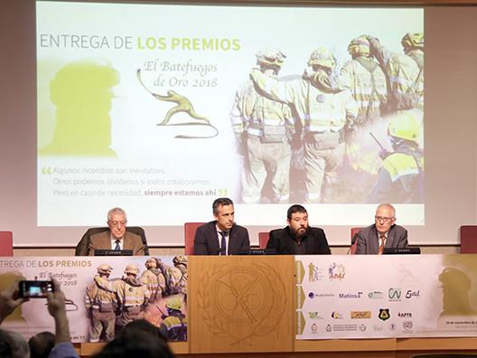 Batefuegos de Oro 2018, carlos Novillo, Ciencias de la Información, Pedro Zugasti, Ricardo Véles, José Antonio Jiménez d ellas Heras
