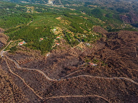 biomasa-Portugal-incendios