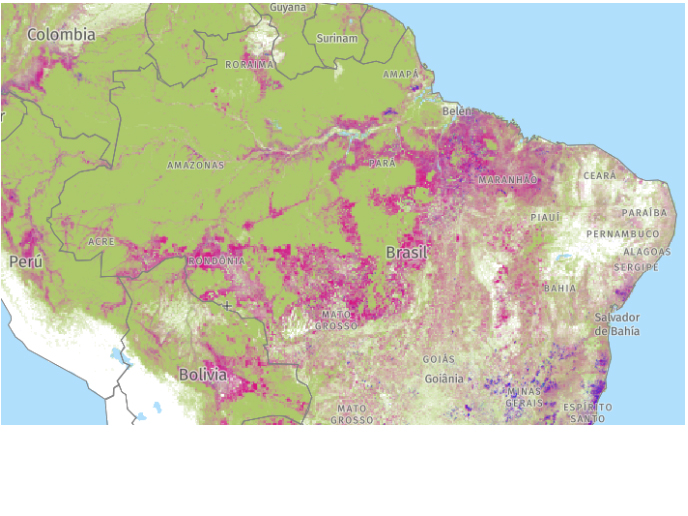 Brasil-deforestacion-2019