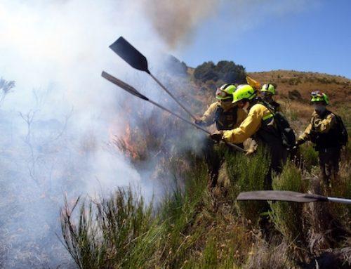 España se gasta 600 millones de euros al año en extinción de incendios