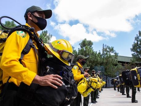 brigadas-conafor-california-mexico-osbo