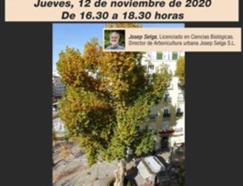 Los jueves, Café Forestal, seminarios digitales del COITF