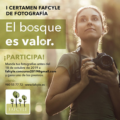 cartel-concurso-fafcyle