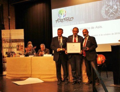 Gestión forestal para luchar contra los incendios y el cambio climático