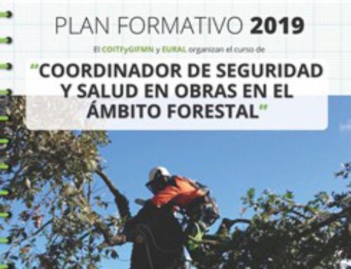 Curso coordinador seguridad y salud en obra forestal