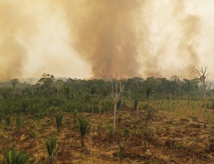 amazonia-incendios-WWF-osbo