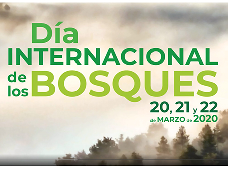 dia-internacional-bosques-2020-cartel