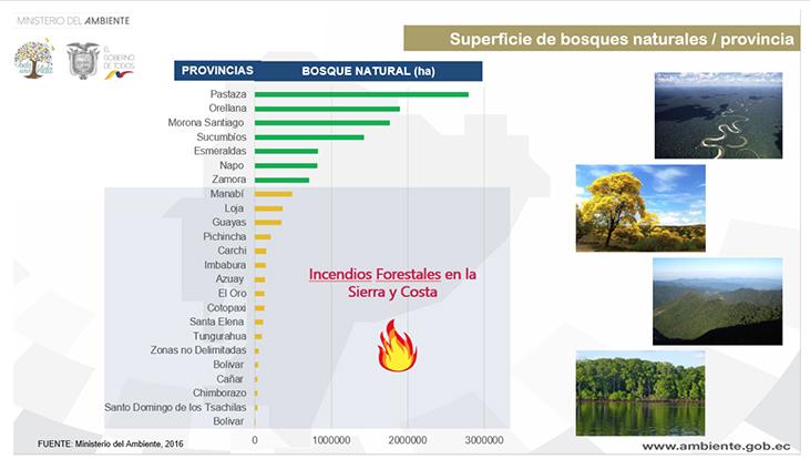 Ecuador-estadísiticas-incendios-gráfico