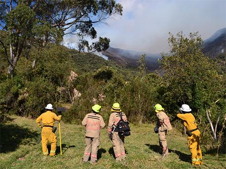 Ecuador-Incendio-bomberos-Mejía