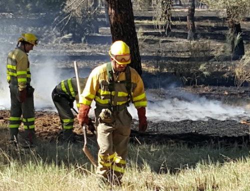 487.506 euros para la restauración de fincas particulares quemadas