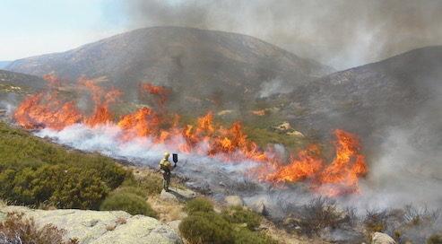 fuego-paisaje