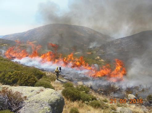 fuego, paisaje