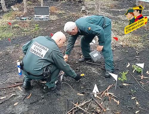 178 encausados por incendios forestales en cinco meses de 2019