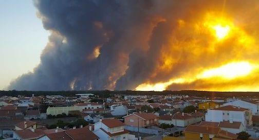 Helio-Madeiras-incendio-portugal-wwf-osbo