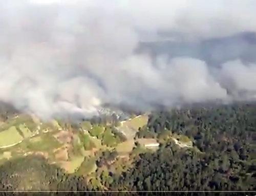 Los incendios en Galicia afectan ya a más de 750 hectáreas