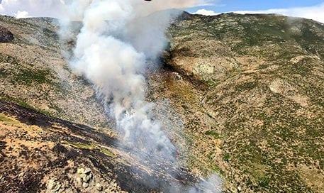 incendio-gavilanes-reproducción-brif-iglesuela