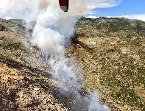 Extinguido el incendio de El Arenal y reproducción en el de Gavilanes