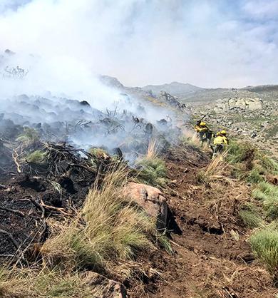 incendio-gavilanes-reroduccion-perimetraje