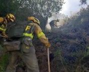 incendio-sotillo-trabajos-desbroce-brif