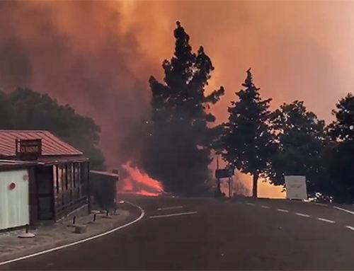 Hace 12 años, en Tejeda, se quemaron 19.180 hectáreas