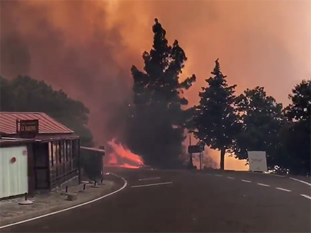 incendio-tejeda-2017
