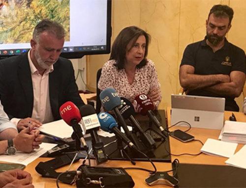 El incendio de Valleseco en Gran Canaria está en fase de estabilización