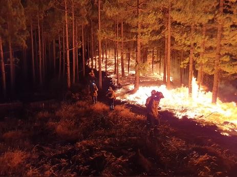 incendio-valleseco-canarias-quema-ensanche