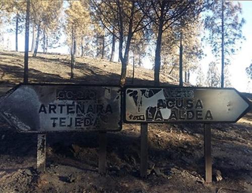 Un millón de euros para restauración de los incendios de Gran Canaria