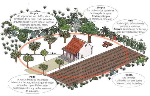 interfaz-limpieza-vegetacion-Gran-Canaria-osbo