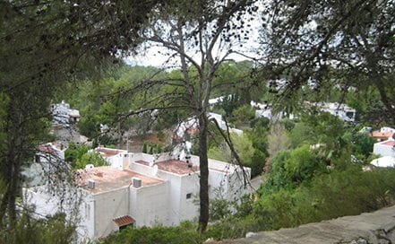 interfaz-urbano-forestal-Ibiza