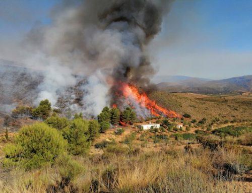 Terque y Sotillo de la Adrada protagonizan los incendios del fin de semana