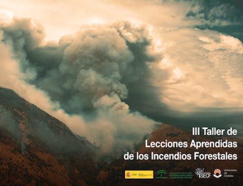El futuro: más probabilidad de grandes incendios y campañas más largas