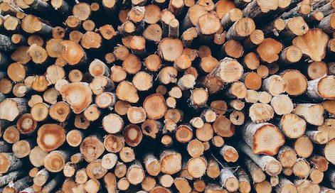 madera, troncos, biomasa