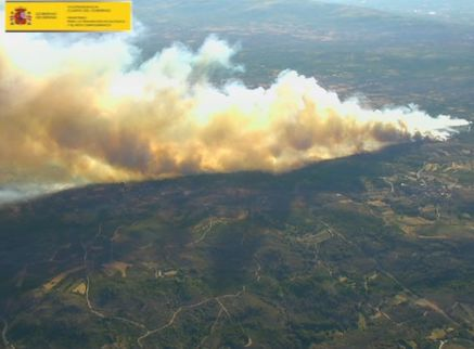 monterrei-incendio-osbo