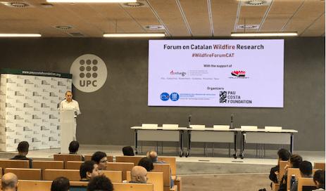Pau-Costa-forum