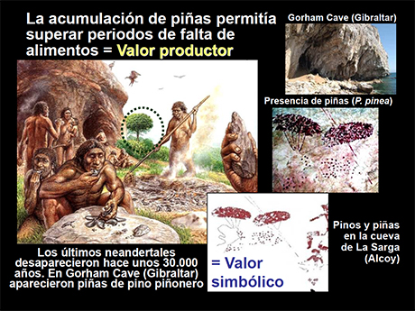 pinos-peninsula-iberica-luis-gil