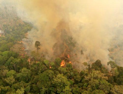 El planeta en llamas