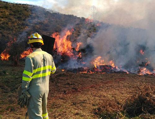 Castilla y León en peligro medio de incendios hasta el 4 de abril