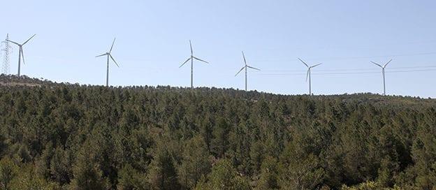prevencion-gestion-congreso-forestal-valenciano-2