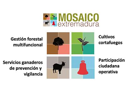 proyecto-mosaico-herramientas