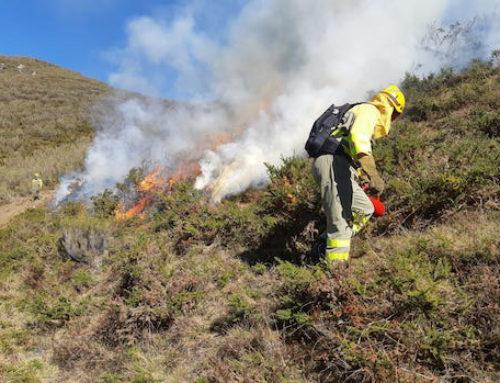 La falta de personal técnico paraliza la gestión forestal en Asturias