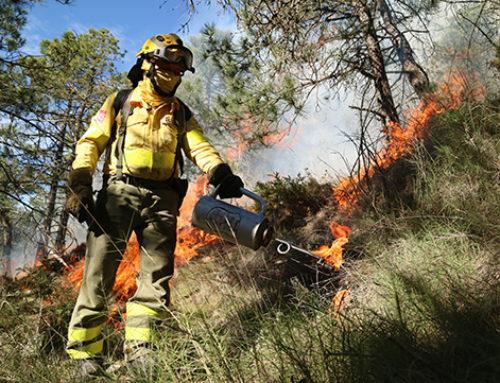 Trex 2019: Andalucía centrará la atención mundial del fuego técnico