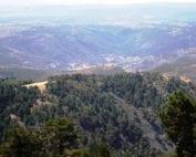 sierra-albarracin-osbo