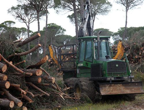 Indignación en la ingeniería forestal por el nuevo Convenio Forestal