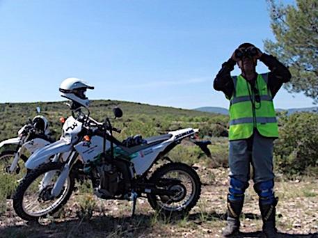 vigilancia-prevencion-valenciana-incendios-osbo